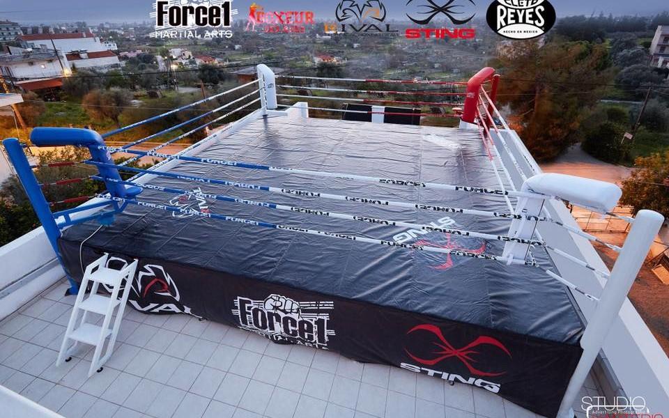 kick box ioannidis team