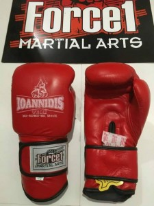 kick box kallithea ioannidis team